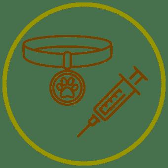vaccin-tatouage